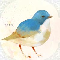 タト | Social Profile
