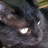 darkblackcat99