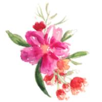 Robyn Oakenfold   Social Profile