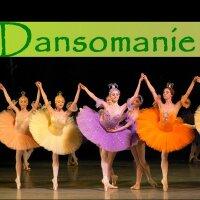 dansomanie | Social Profile