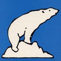 Eisbär ❄️ | Social Profile