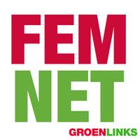 FemNetGL