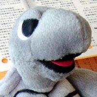 Hatsuru Morita | Social Profile