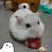 The profile image of shoko_jojo