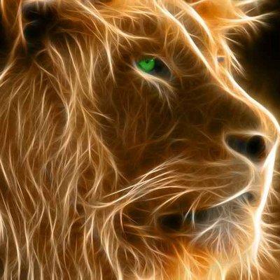Leo    Social Profile