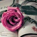 Al-Rawahi (@000d8366ee63425) Twitter