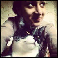 afeefah | Social Profile