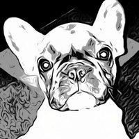 RO | Social Profile
