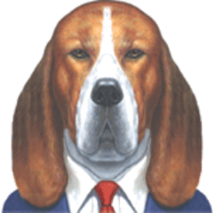 SalesDog Social Profile