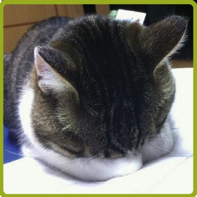 田邊のおっちゃん♪ | Social Profile