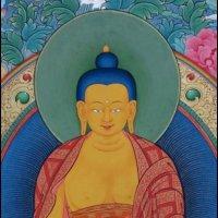Blue Buddha | Social Profile
