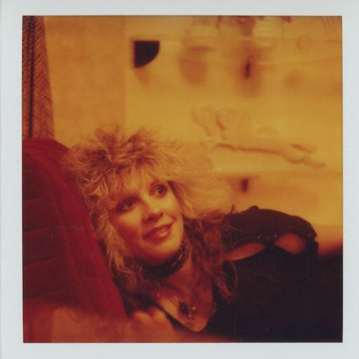 Stevie Nicks Social Profile