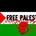 ISRAEL BOMBS BABIES
