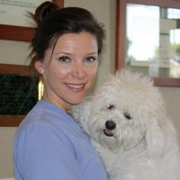 Orange County Vet | Social Profile