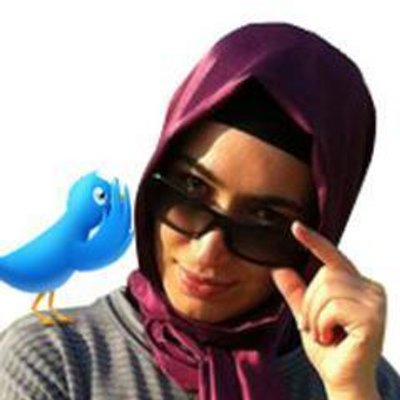 Twit-ül Havadis | Social Profile