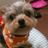 yusuke_hotmilk