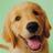 The profile image of Makeinu38