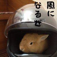 クソ江田兎野郎   Social Profile