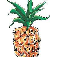 Pineapple Press | Social Profile