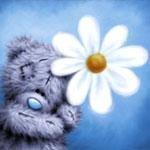 Churunchik Social Profile