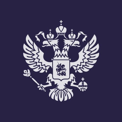 President of Russia Social Profile