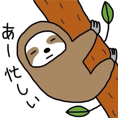 ナマケモノの画像 p1_19