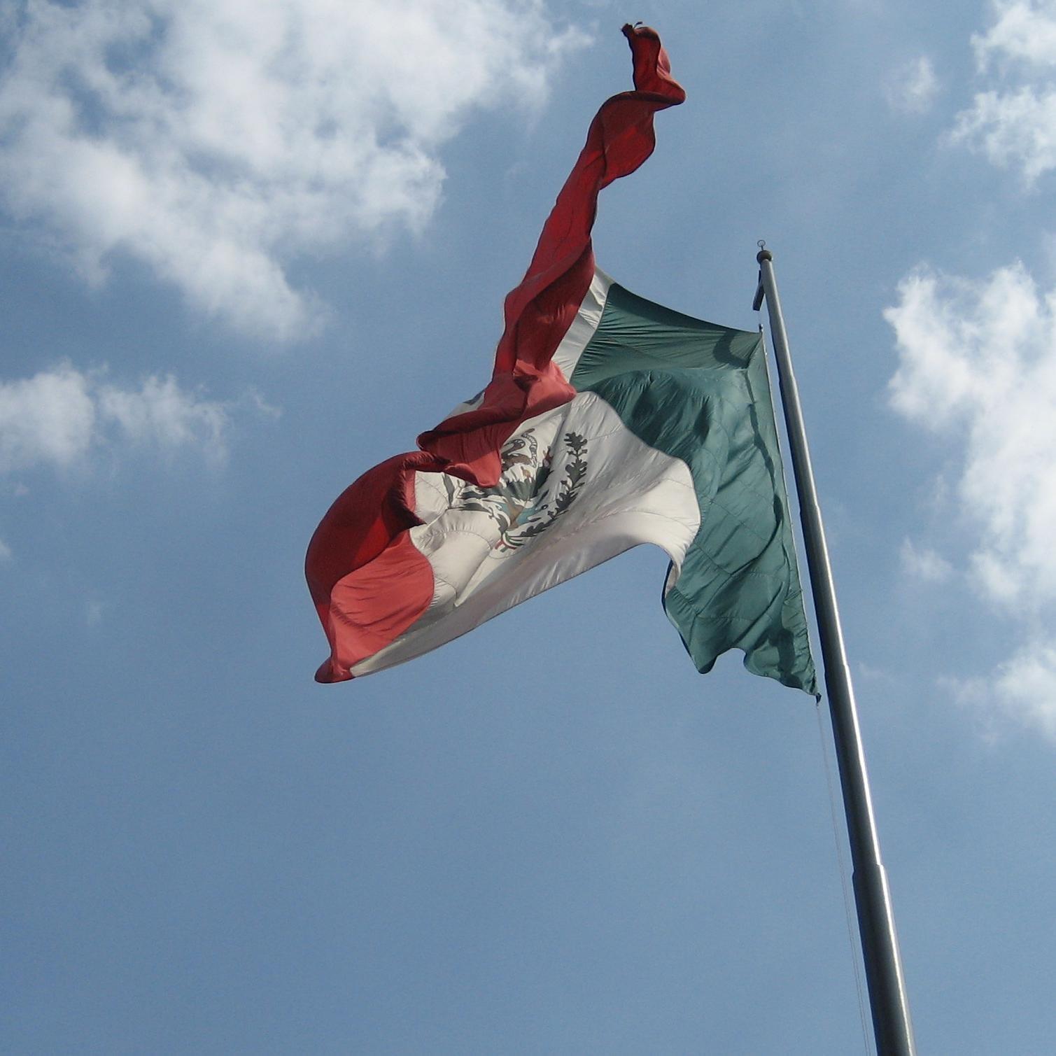 Güerita en México Social Profile