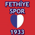 Fethiyespor1933's Twitter Profile Picture