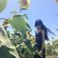 chan momo | Social Profile