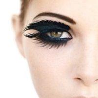 Beauty Snob | Social Profile