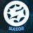 ImmMason profile
