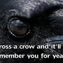 Crowsfoot (@018fa728573e46d) Twitter