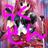 The profile image of cha_cha151