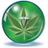 MediMarijuanaHQ profile