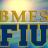 FIUBMES profile