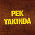 PEK YAKINDA's Twitter Profile Picture