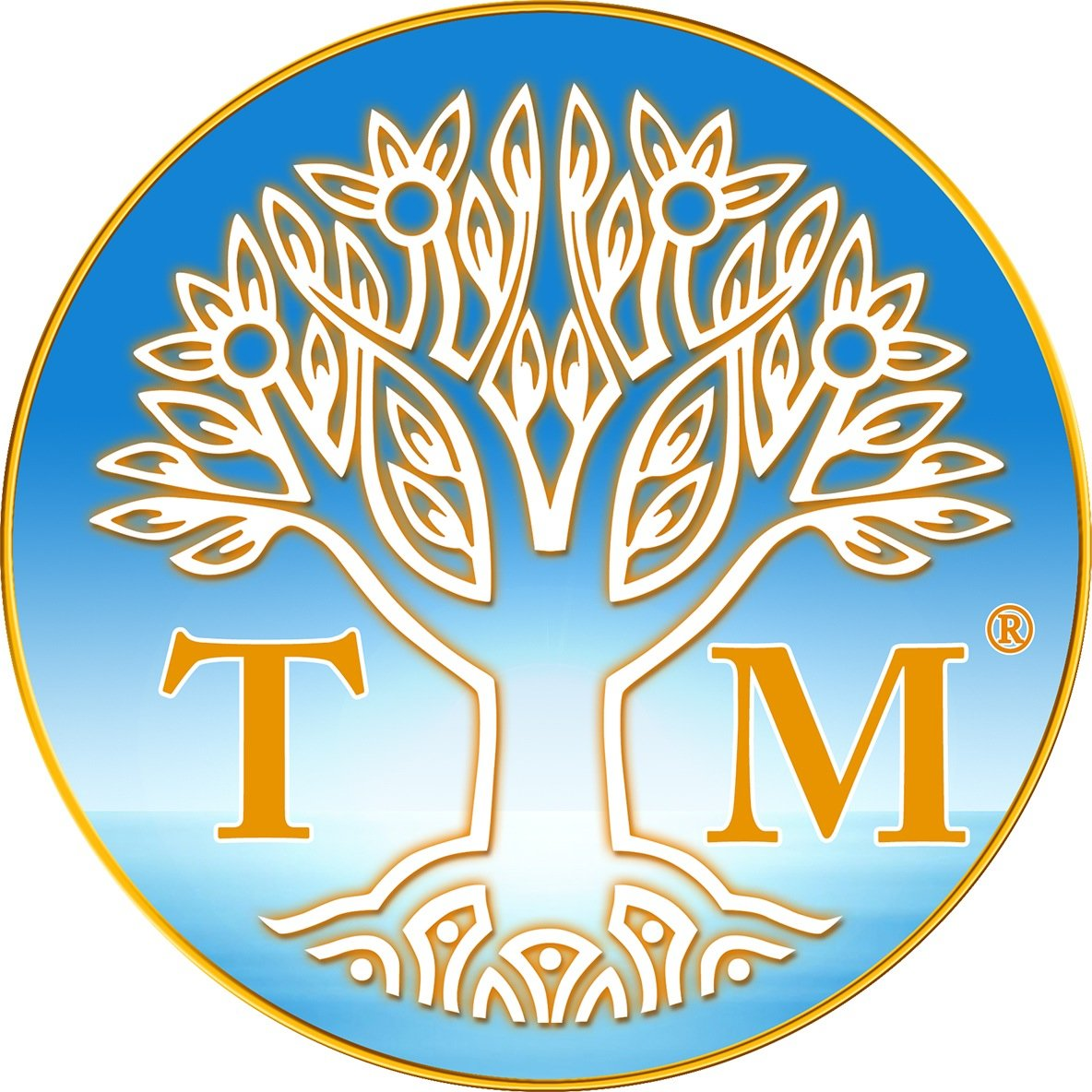 TM Meditation Social Profile