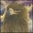 aldo_california profile