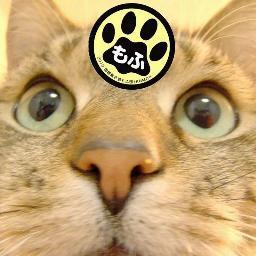 ジゴロウ(あっぱらぱ) Social Profile