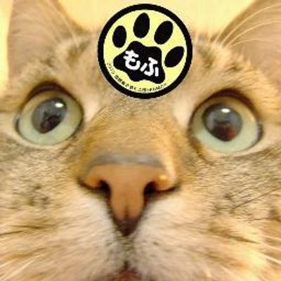 ジゴロウ(あっぱらぱ) | Social Profile