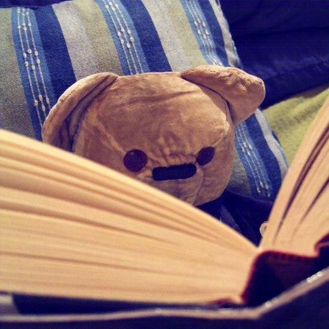 Teddy M. Bear Social Profile