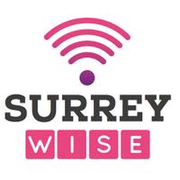 Surrey WISE   Social Profile