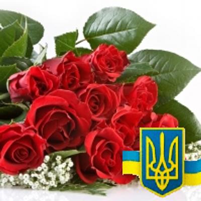Trandafir bălțean (@ParadisBaltean)