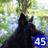 Rivendell18 profile
