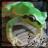The profile image of 580606iwagaeru