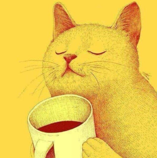 大猫 Social Profile
