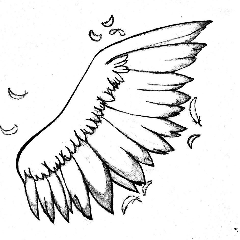 翅膀 Social Profile