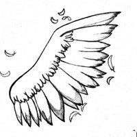 翅膀 | Social Profile