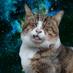 @epilepticcats