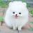 AZSang_han profile